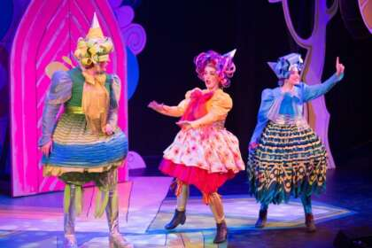 Article image for The Frozen Princess Pantomime - melting hearts this Christmas